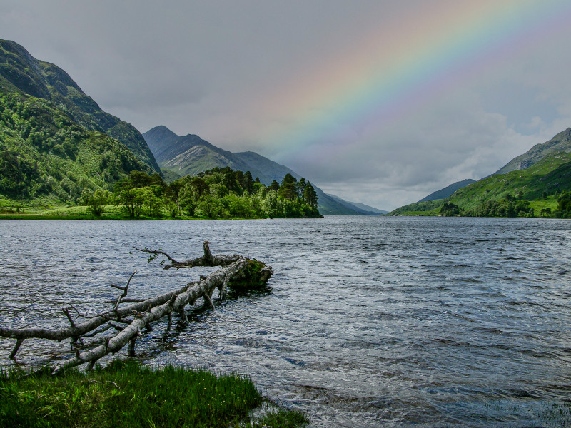 A photo of 'Loch Duich ' by D Gallimore