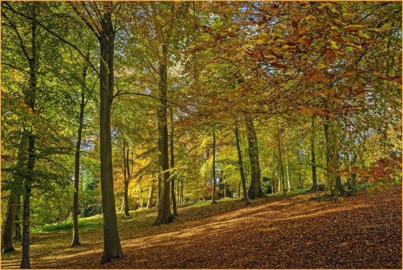 A photo of 'Batsford in sunlight' by G Holt