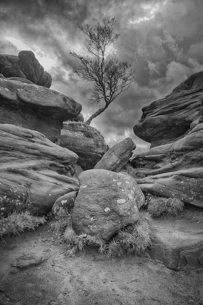 A photo of 'Brimham Rocks' by R. Dallywater