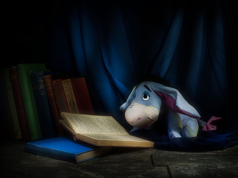 A photo of 'Educating Eeyore' by Julie Holbeche-Maund ARPS