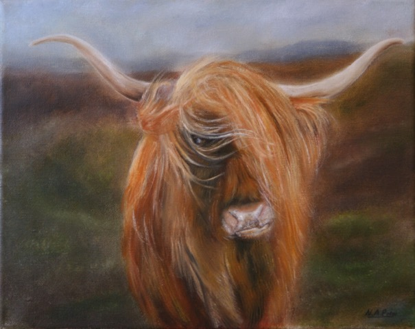A photo of 'Highland Cow' by Neil Prior