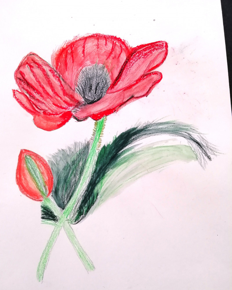 A photo of 'Flower Study' by a member of the Pathways Centre Art Group led by tutor Beatrice Bishop.