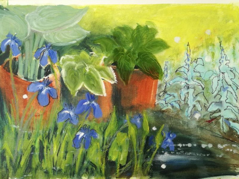A photo of 'Irises in the Pond' by Chris Anne Taylor