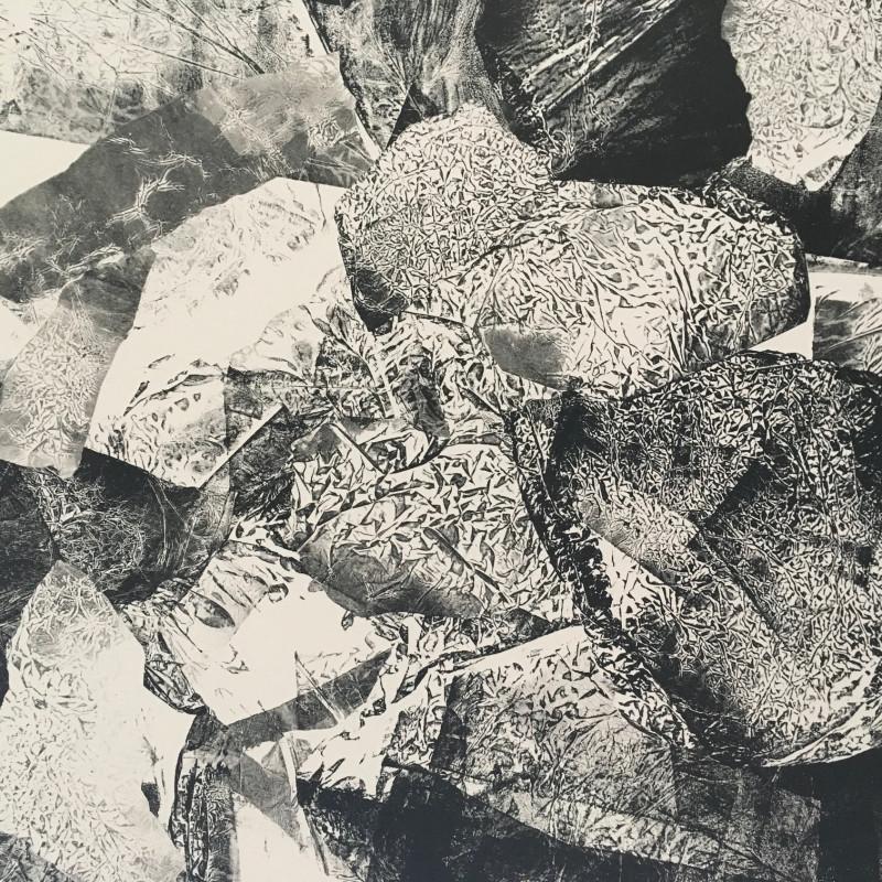 A photo of 'Mono Print 1' by Veronika Pagacova