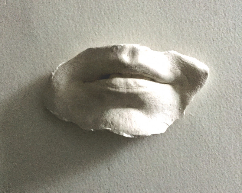 A photo of 'Life sized Lips' by Samantha Haskins