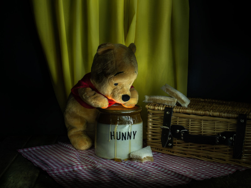 A photo of 'Pooh and Honey' by Julie Holbeche-Maund ARPS